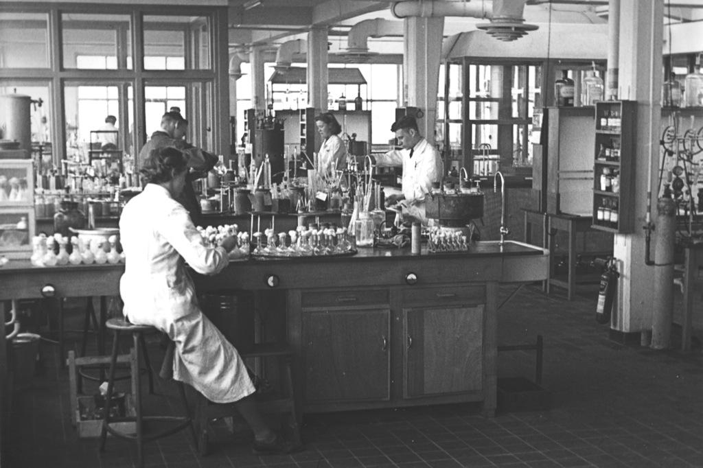 lab1955